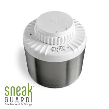 SneakGuard Responsible Storage Safe